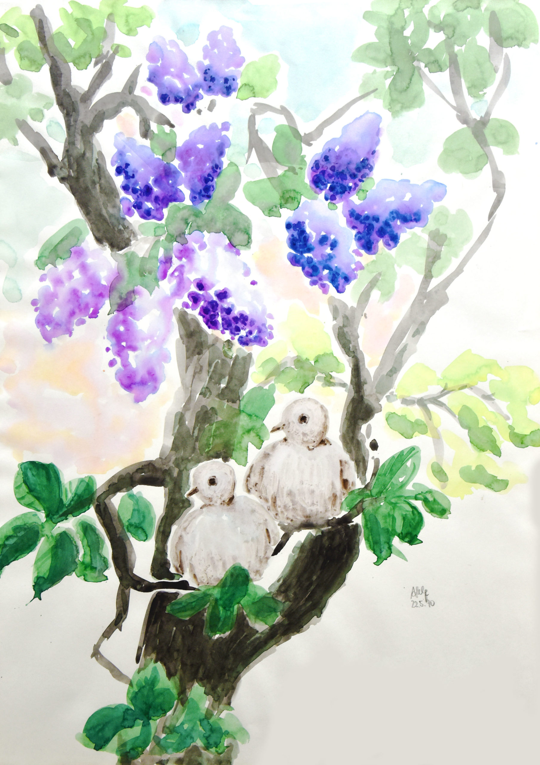 Blühender Fliederbaum in dem zwei Vögel sitzen.